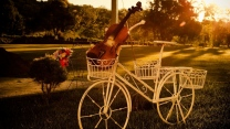 skulptur fahrrad violine park retro
