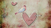 vogel herz art zeichnung retro