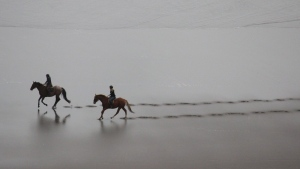 meer strand sand pferde reiter spaziergang