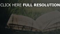 buch gras buchstaben text seite