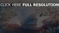 offenes buch seiten lesen gras