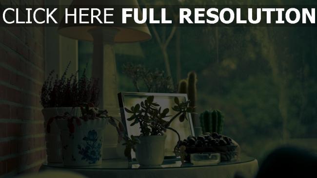 Hd hintergrundbilder blument pfe lampen schreibtisch for Fenster lampen