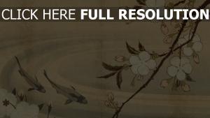 bild japanisch blumen teich fisch