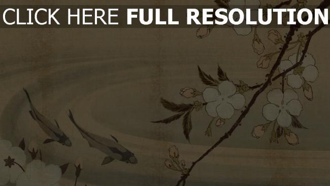 hd hintergrundbilder bild japanisch blumen teich fisch