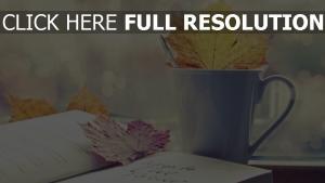 becher notebook blätter herbst stimmung