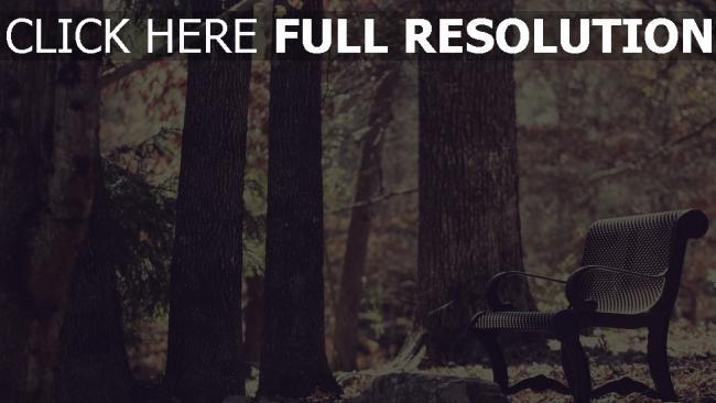 hd hintergrundbilder ort der ruhe wald bank bäume