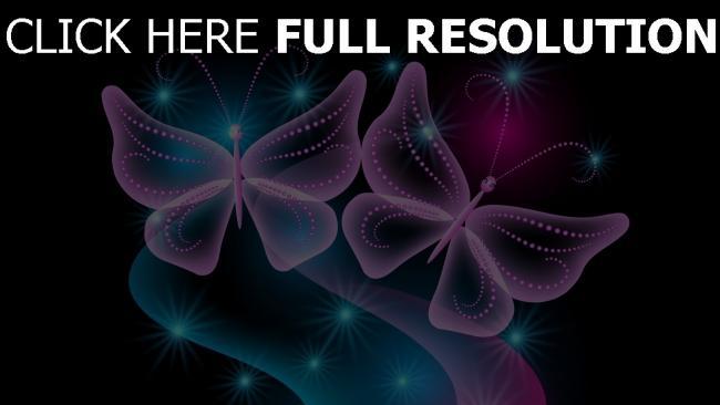 hd hintergrundbilder schmetterling neon lila blau schwarz