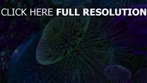 farbe abstrakt formen 3d blumen