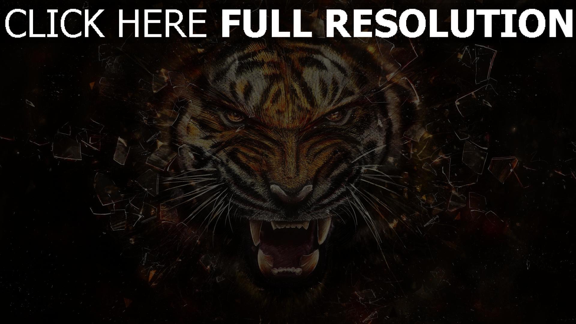hd hintergrundbilder tiger scherben zähne dunkle 1920x1080