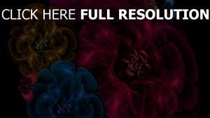 blumen muster transparenz gefärbt dunkel