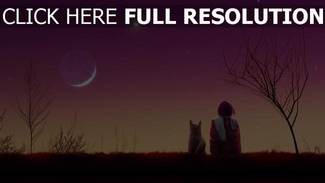hd hintergrundbilder himmel mond rosa katze mädchen Sonnenuntergang