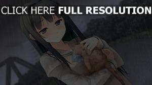 ayase sayuki mädchen regen kitten pflege