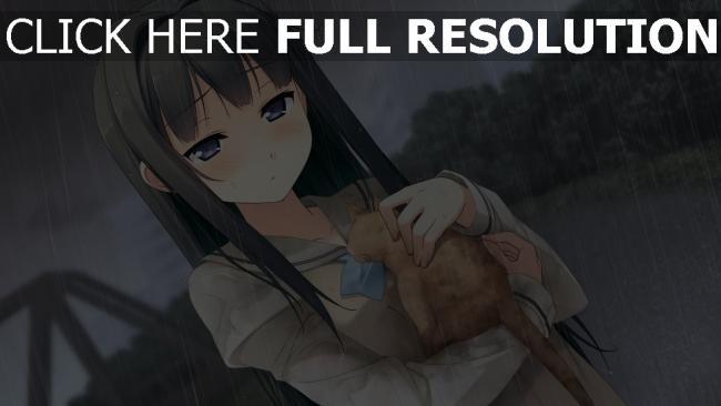 hd hintergrundbilder ayase sayuki mädchen regen kitten pflege