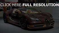 bugatti veyron vitesse rembrandt auto-show Genf 2014