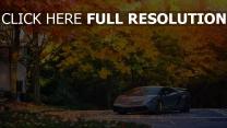 lamborghini gallardo superleggera sportwagen grau herbst