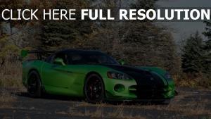 snakeskin grün himmel edition acr dodge viper autoflyover