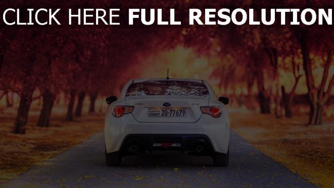 hd hintergrundbilder herbst auto rückansicht subaru