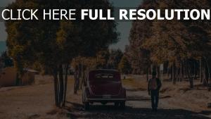 rückansicht bäume autos