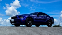 ford mustang seitenansicht ford