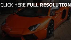 seitenansicht lamborghini sportwagen