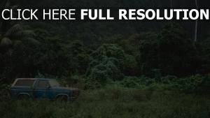 berge reisen auto bäume