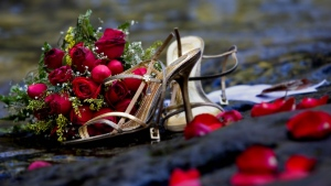 strauß rosen rot schuhe blütenblätter