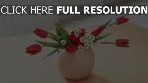 vase tulpen tisch gänseblümchen strauß