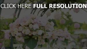 strauß weiß rosa feier gläser