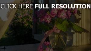 blumen rosa vase glas fenster band