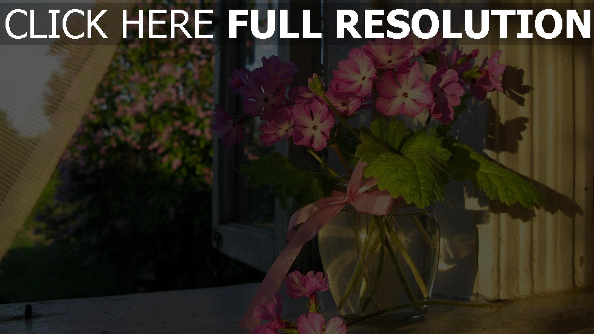 Fenster Band hd hintergrundbilder blumen rosa vase glas fenster band desktop