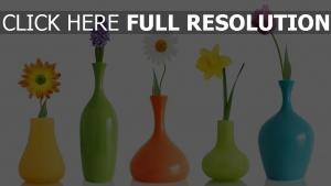 blumen vase bunt hell hintergrund