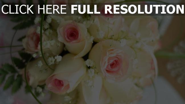 hd hintergrundbilder weiße rosen knospen rosa brautstrauß