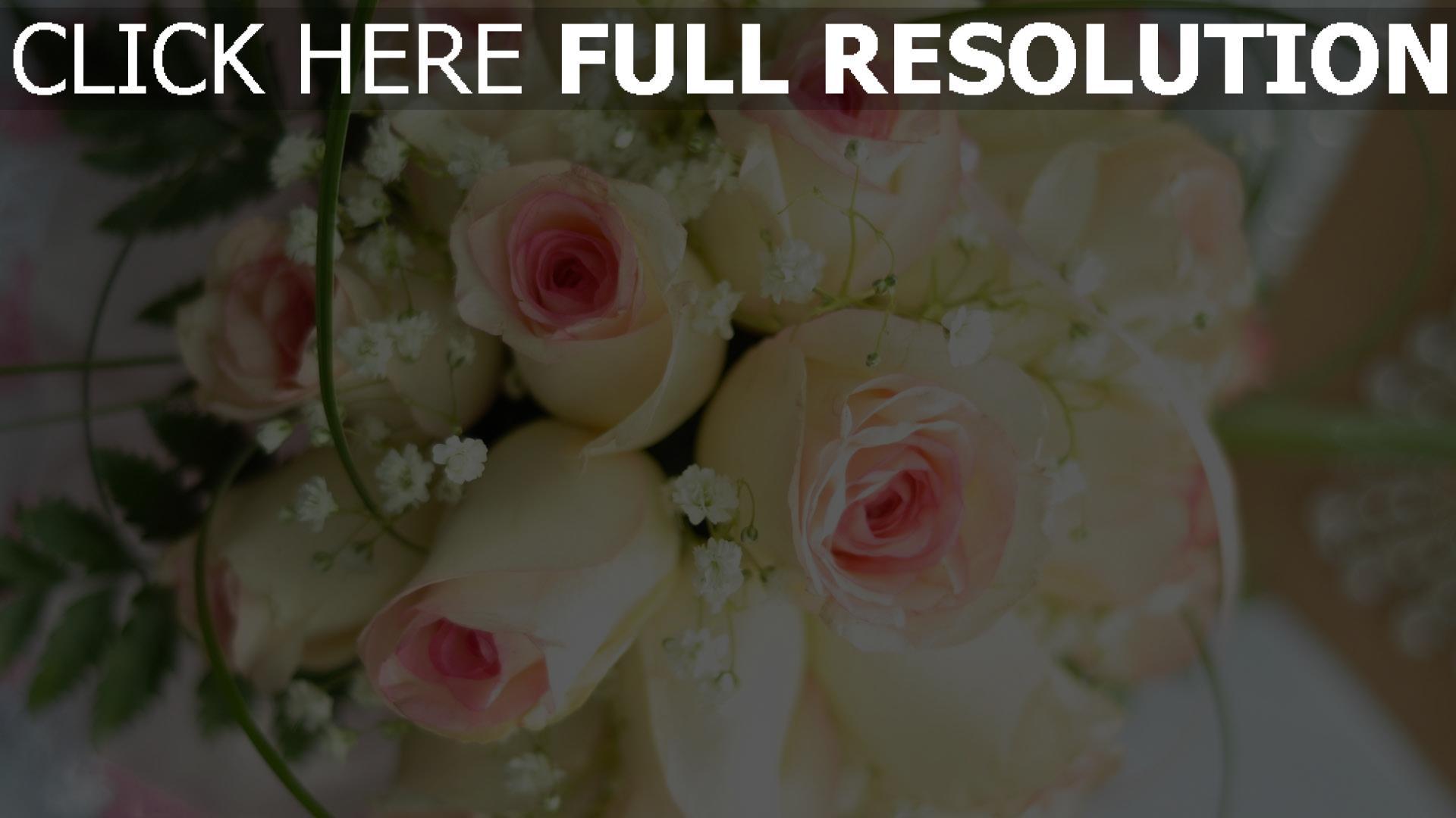 Herunterladen 1920x1080 Full HD Hintergrundbilder weiße rosen knospen ...