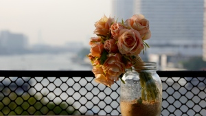 rosen blumen rosa glas vase