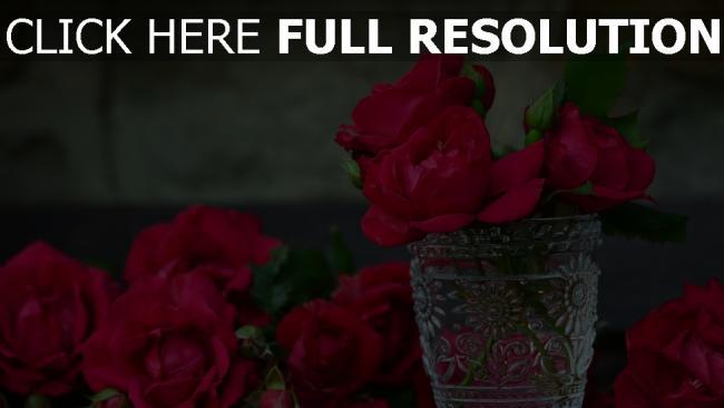 hd hintergrundbilder rote rosen blütenblätter vase glas knospen blüten