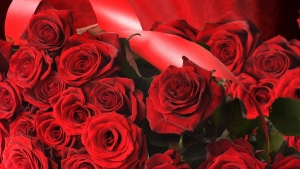 rosen rote strauß blütenblätter band
