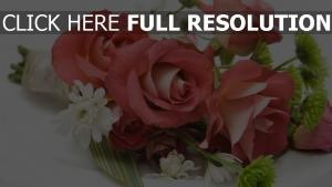 bouquet schöne rosen zusammensetzung