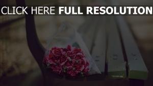 bouquet nelke bank unschärfe