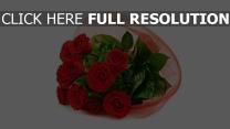 rosen rote strauß hell hintergrund