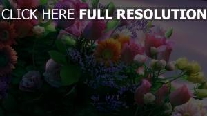 blumenstrauß rosen gerbera vielfältig mehrfarbige
