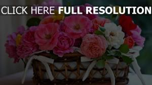 rosen bunt rosa gelb warenkorb