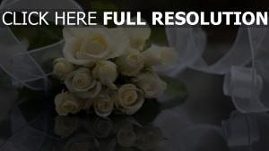 rosen weiß creme blumen farbband