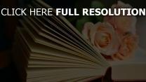 lesen rosen buch strauß
