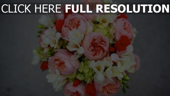 hd hintergrundbilder pfingstrose rose freesie strauß knospen