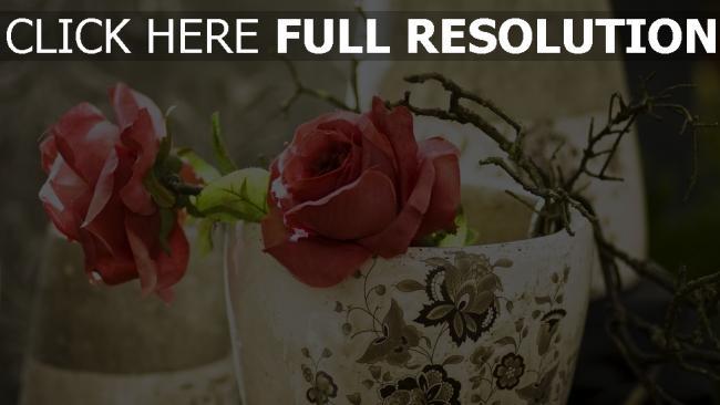 hd hintergrundbilder rosen rosa zweige topf vase
