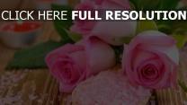 rosen rosa salz kerzen unschärfe