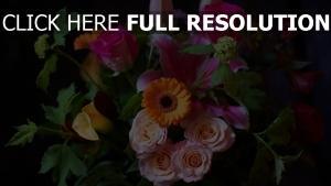 rosen gerbera strauß bunt blätter
