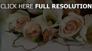 strauß romantik blumen rosen zweig zärtlichkeit