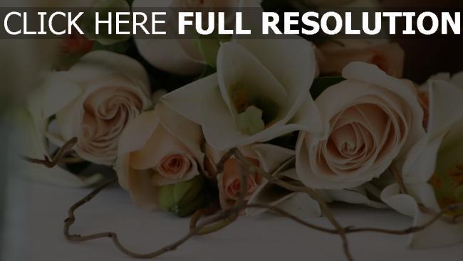 hd hintergrundbilder strauß romantik blumen rosen zweig zärtlichkeit