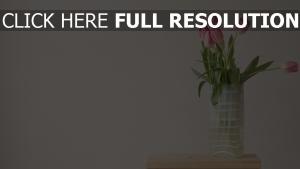 vase stuhl strauß tulpen